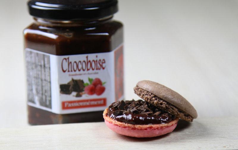 chocoboise1