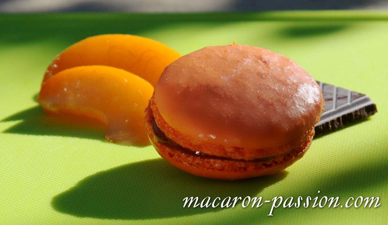 maca abricot choco 1