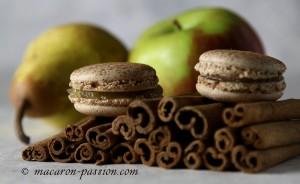 maca poire pomme canel 3