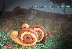 escargots-1-C