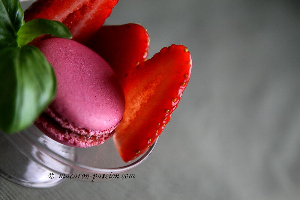 maca fraisebasilic 1