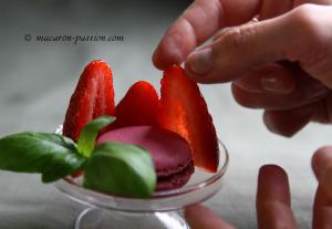 maca fraisebasilic-2