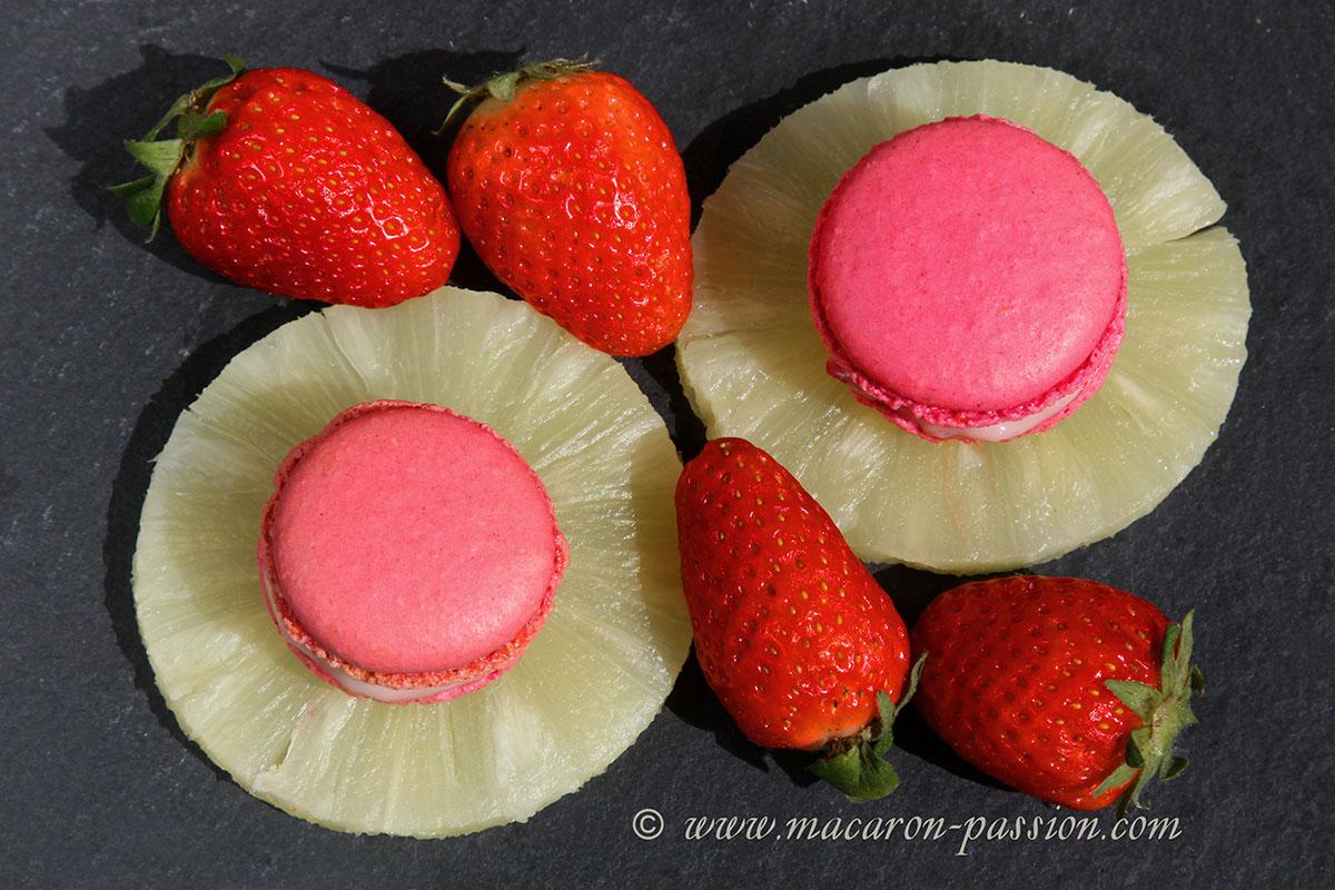 macaron fraise ananas 2