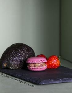 macaron fraise avocat1